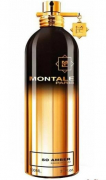 Montale So Amber100ml